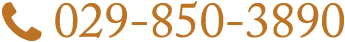 029-850-3890